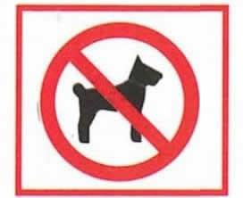 pictogramme-chien-interdit