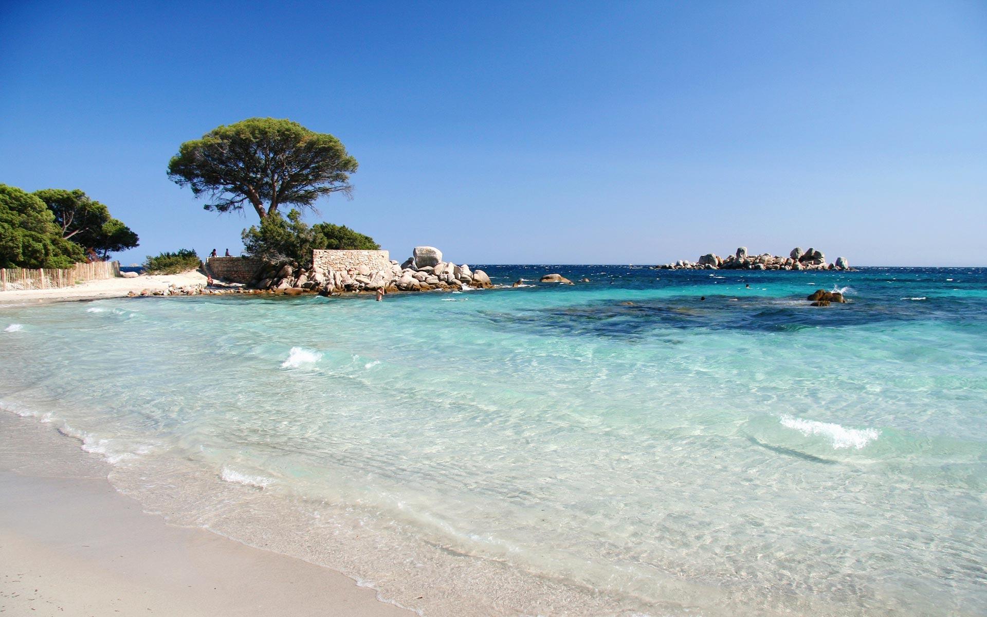 plage palombaggia porto vecchio corse du sud